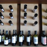 Semeli-Winery-Nemea-11