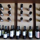 Semeli-Winery-Nemea-11